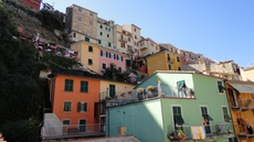 Colorful little houses in Manarola in the Cinque Terre