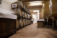 The Wine Olympics take place in a winery in Italy