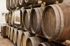 The wine mellows in old wine casks